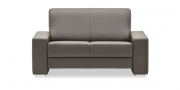 LIBERTY-Ohio - 2 Platz Sofa in braunem Leder